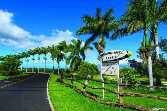 3651 Omaopio Rd, Kula, HI 96790 (MLS #382643) :: Elite Pacific Properties LLC