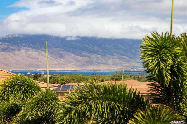 2996 Hihimanu St #150, Kihei, HI 96753 (MLS #382646) :: Elite Pacific Properties LLC
