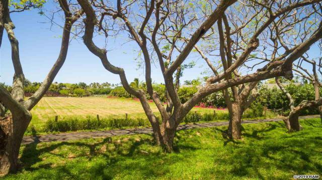 0 Kapukaulua Pl, Paia, HI 96779 (MLS #382712) :: Coldwell Banker Island Properties