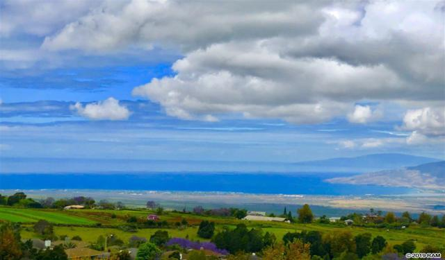 82 Kulamanu Cir, Kula, HI 96790 (MLS #382784) :: Maui Estates Group