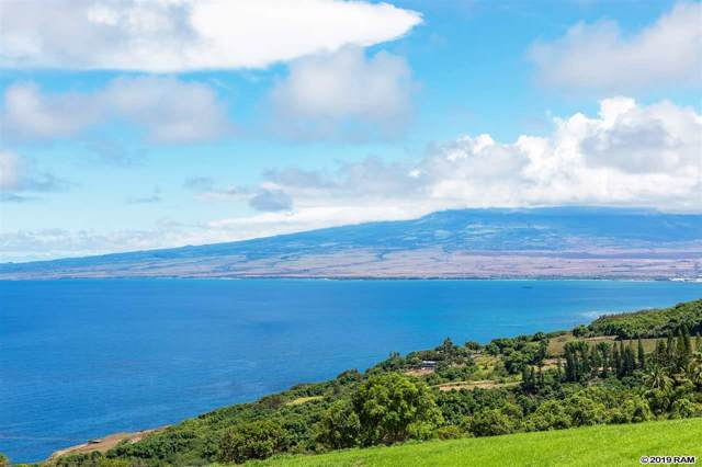 145 Kaukini Loop #6, Wailuku, HI 96793 (MLS #384042) :: Elite Pacific Properties LLC