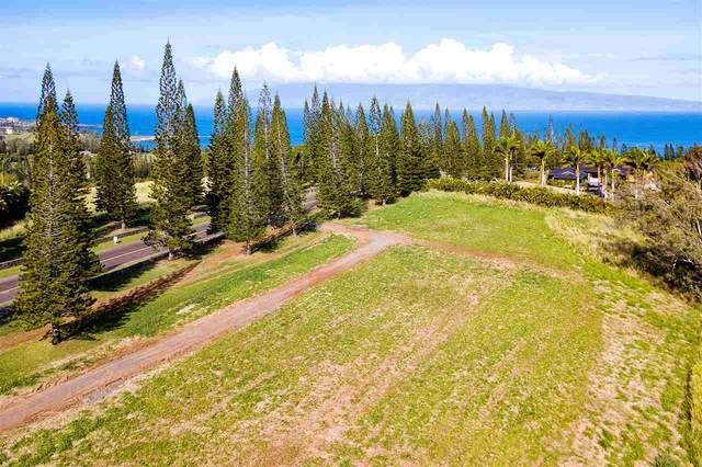 221 Plantation Club Dr #13, Lahaina, HI 96761 (MLS #384157) :: Elite Pacific Properties LLC