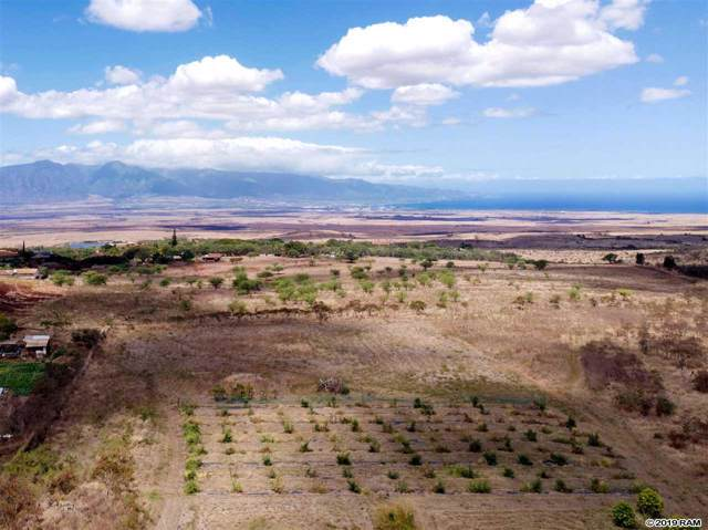 1990 Omaopio Rd, Kula, HI 96790 (MLS #384307) :: Maui Estates Group