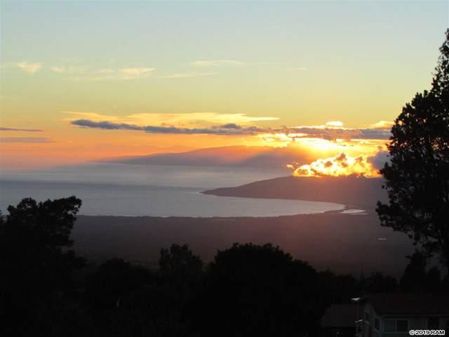 294 Hapapa Rd, Kula, HI 96790 (MLS #384718) :: Coldwell Banker Island Properties