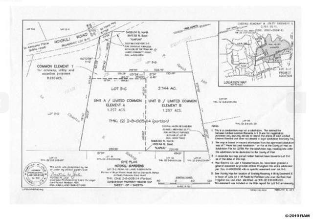 0 Hookili Rd B, Haiku, HI 96708 (MLS #385233) :: Coldwell Banker Island Properties