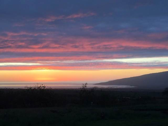 22 Apali Way, Kula, HI 96790 (MLS #385405) :: Maui Estates Group