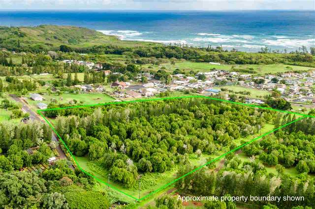 0 Kuhinia St, Wailuku, HI 96793 (MLS #385986) :: Elite Pacific Properties LLC
