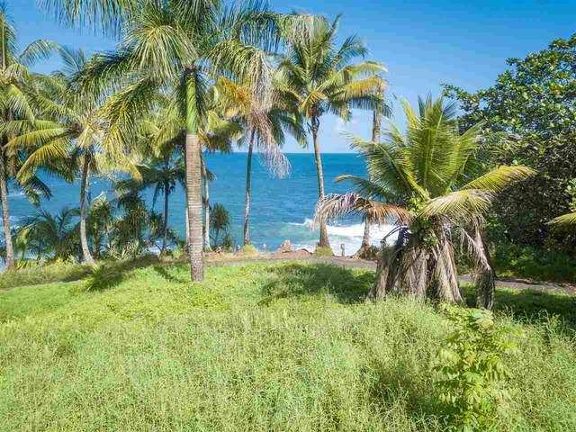 0 Nahiku Rd, Hana, HI 96713 (MLS #386176) :: Maui Estates Group