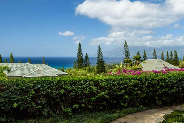 114 Woodrose Pl, Lahaina, HI 96761 (MLS #387021) :: Maui Estates Group