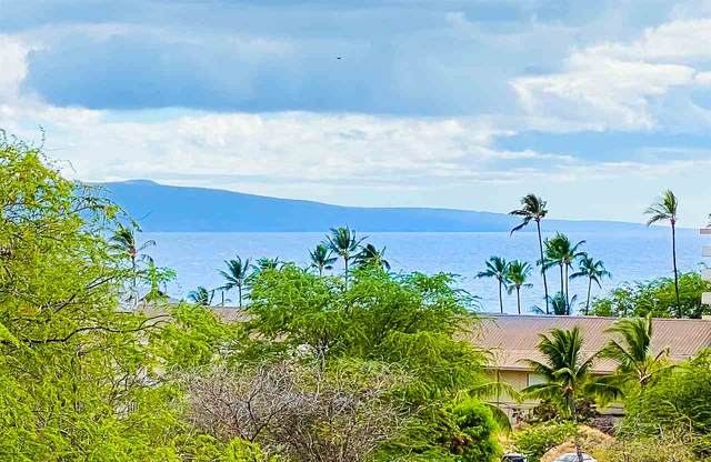 2387 S Kihei Rd D207, Kihei, HI 96753 (MLS #388088) :: Keller Williams Realty Maui