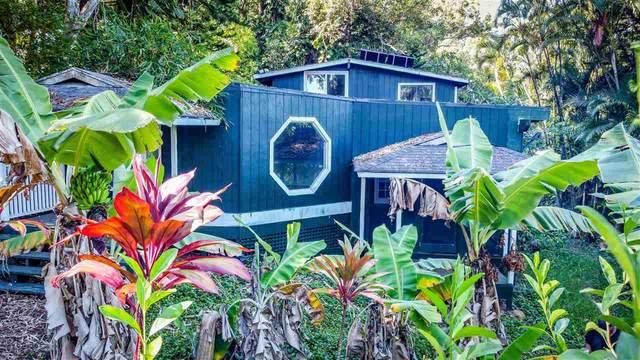 55 Lepo Pl, Haiku, HI 96708 (MLS #388459) :: Keller Williams Realty Maui