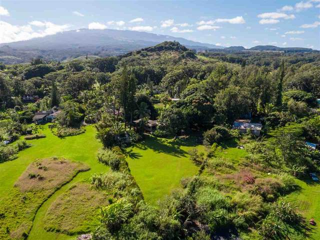 540 Kaiapa Pl, Haiku, HI 96708 (MLS #389605) :: Coldwell Banker Island Properties