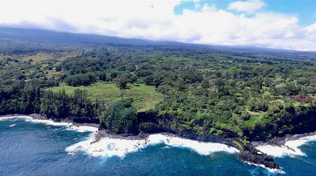 0 Lower Nahiku Old Rd, Hana, HI 96713 (MLS #389891) :: Maui Lifestyle Real Estate | Corcoran Pacific Properties