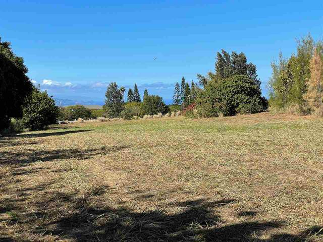 10 Mohala Pl, Makawao, HI 96768 (MLS #390158) :: LUVA Real Estate