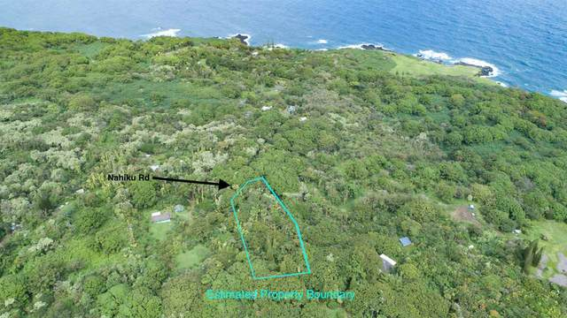 772 Lower Nahiku Rd, Hana, HI 96713 (MLS #390555) :: 'Ohana Real Estate Team