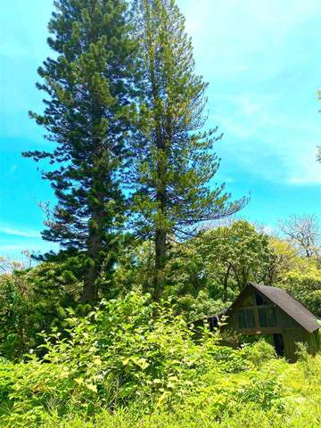 1330 Ulaino Rd, Hana, HI 96713 (MLS #391198) :: Hawai'i Life