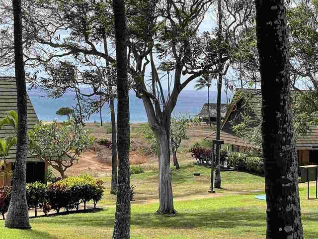 0 Kepuhi Pl 1216/13B06, Maunaloa, HI 96770 (MLS #391566) :: Maui Lifestyle Real Estate | Corcoran Pacific Properties