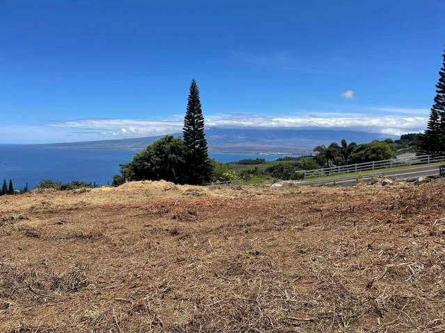 30 Hulumanu Pl Mcr Lot 29, Wailuku, HI 96793 (MLS #392627) :: Corcoran Pacific Properties
