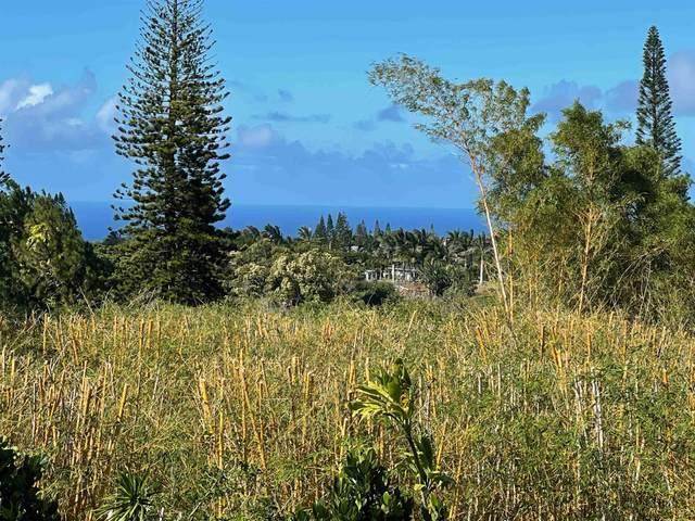 1140 Nanihoku Pl, Haiku, HI 96708 (MLS #393007) :: Corcoran Pacific Properties