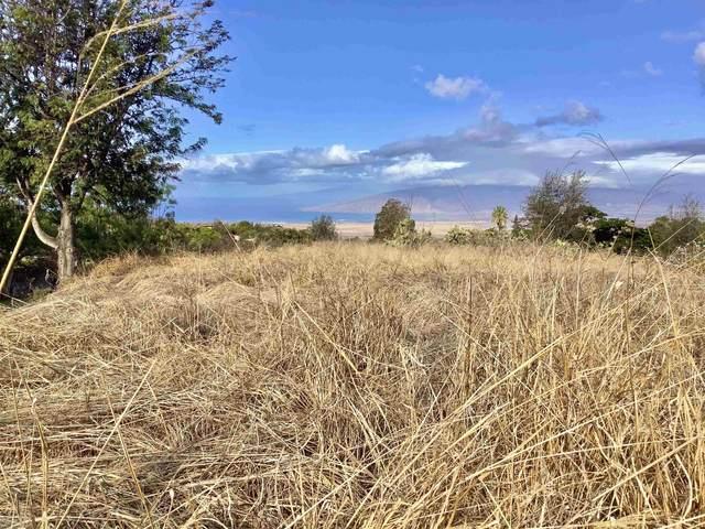 Holopuni Rd, Kula, HI 96790 (MLS #393239) :: Coldwell Banker Island Properties