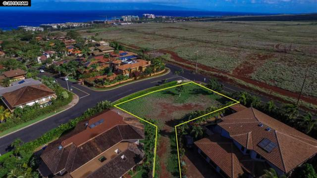 10 N Iwa Pl, Lahaina, HI 96761 (MLS #369004) :: Elite Pacific Properties LLC