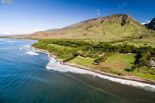 69 Kuahulu Pl, Lahaina, HI 96761 (MLS #372291) :: Elite Pacific Properties LLC