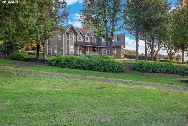 450 Hoopalua Dr, Pukalani, HI 96768 (MLS #373629) :: Elite Pacific Properties LLC