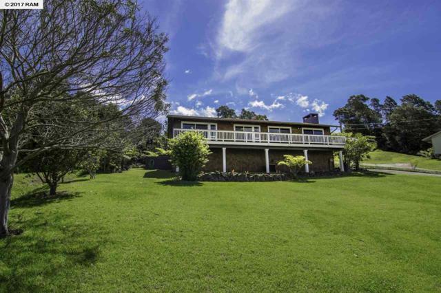 36 Palena Pl, Kula, HI 96790 (MLS #374282) :: Island Sotheby's International Realty