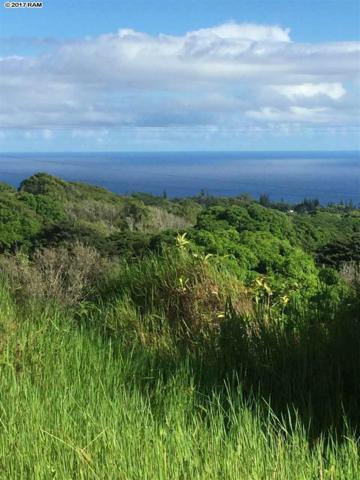 7960 Hana Hwy, Haiku, HI 96708 (MLS #375742) :: Island Sotheby's International Realty