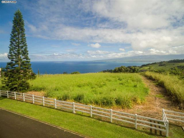 19 Lahaole Pl Lot 10, Wailuku, HI 96793 (MLS #376351) :: Elite Pacific Properties LLC