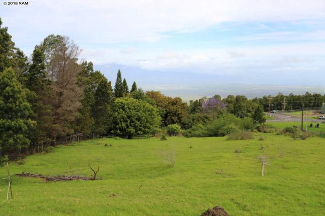 7575 Kula Hwy, Kula, HI 96790 (MLS #378106) :: Elite Pacific Properties LLC