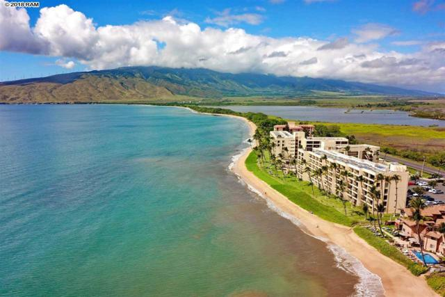 145 N Kihei Rd #102, Kihei, HI 96753 (MLS #380446) :: Elite Pacific Properties LLC