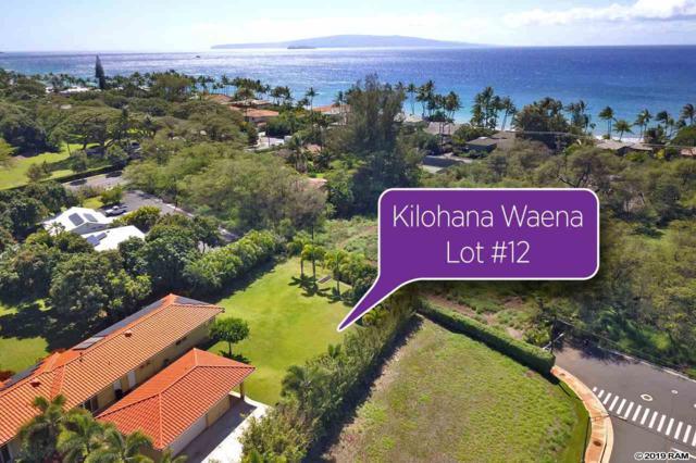 159 Hoolapa St #12, Kihei, HI 96753 (MLS #381719) :: Coldwell Banker Island Properties