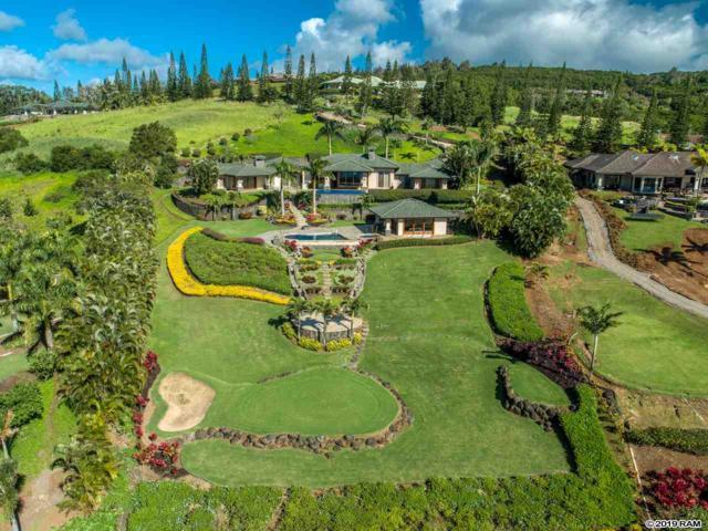 704 Mokuleia Pl, Lahaina, HI 96761 (MLS #382103) :: Maui Estates Group