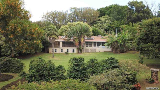 1775 Kalae Hwy, Kualapuu, HI 96757 (MLS #382996) :: Maui Estates Group