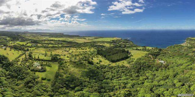 277 Mehana Rd, Haiku, HI 96708 (MLS #383307) :: Elite Pacific Properties LLC