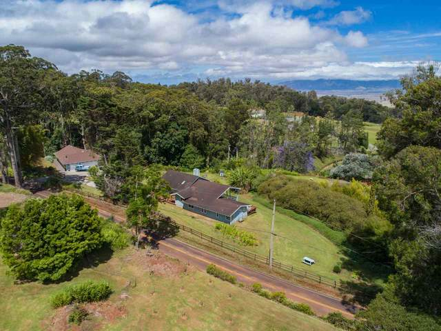 2080 Piiholo Rd, Makawao, HI 96768 (MLS #387384) :: Keller Williams Realty Maui