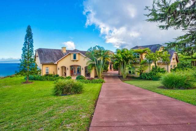 15 Lahaole Pl, Wailuku, HI 96793 (MLS #388622) :: LUVA Real Estate