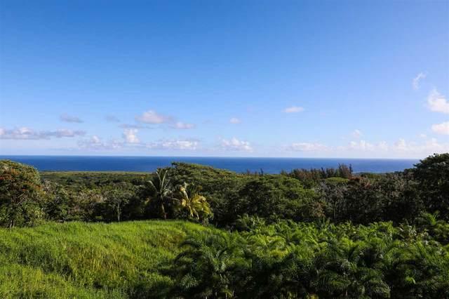130 Kalo Rd, Hana, HI 96713 (MLS #388921) :: Corcoran Pacific Properties
