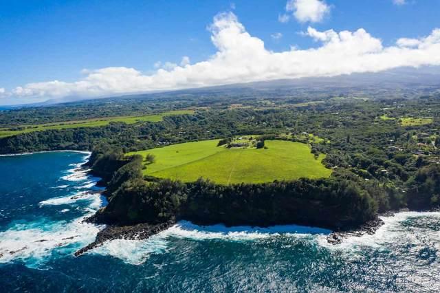 600 Haumana Rd, Haiku, HI 96708 (MLS #389740) :: Corcoran Pacific Properties