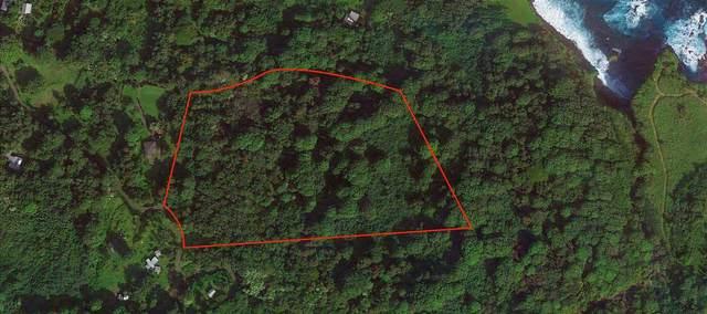 Lower Nahiku Rd, Hana, HI 96713 (MLS #389877) :: Coldwell Banker Island Properties
