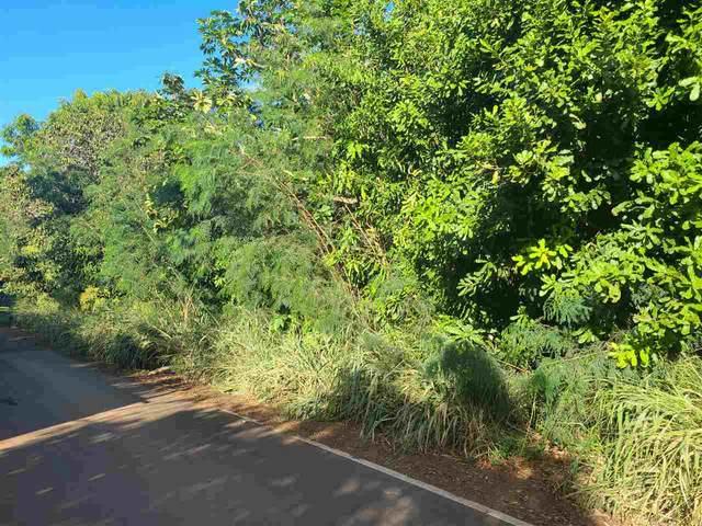 Kahiapo Pl, Haiku, HI 96708 (MLS #390287) :: Maui Lifestyle Real Estate | Corcoran Pacific Properties
