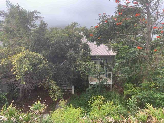 2114 Milo St, Wailuku, HI 96793 (MLS #390578) :: Speicher Group