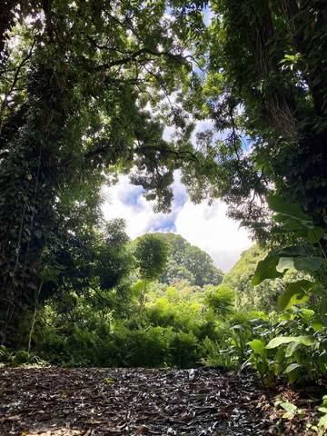 1330 Ulaino Rd, Hana, HI 96713 (MLS #391198) :: Maui Lifestyle Real Estate | Corcoran Pacific Properties