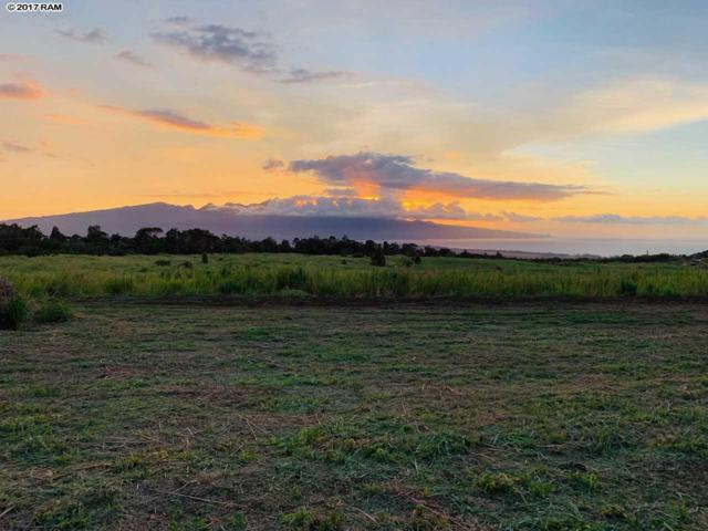 2470 N Baldwin Ave Lot 10, Makawao, HI 96768 (MLS #374550) :: Corcoran Pacific Properties