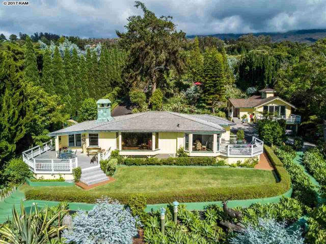 16290 Haleakala Hwy, Kula, HI 96790 (MLS #374925) :: Island Sotheby's International Realty