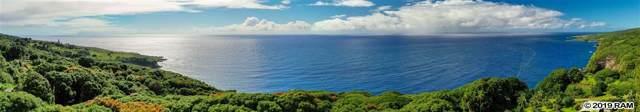 45945 Hana Hwy, Hana, HI 96713 (MLS #378794) :: Maui Estates Group