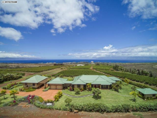 2950 Aina Mahiai Pl, Lahaina, HI 96761 (MLS #380899) :: Maui Estates Group