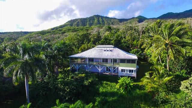 130 Kalo Rd, Hana, HI 96713 (MLS #388921) :: Coldwell Banker Island Properties