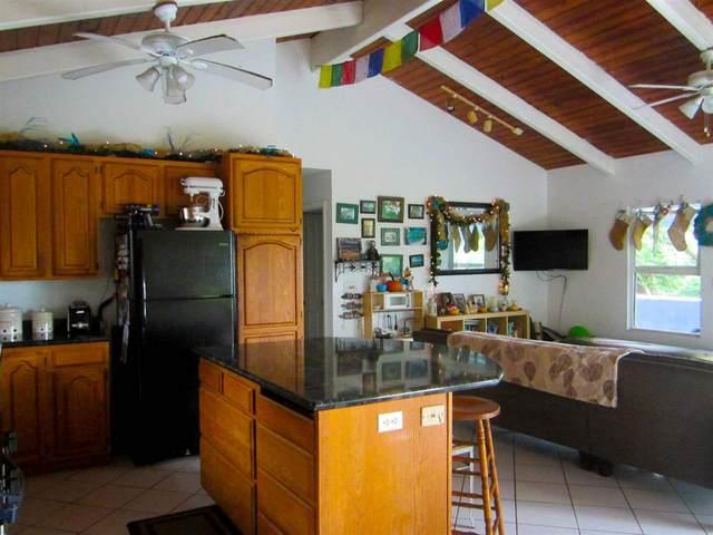 47990 Hana Hwy, Hana, HI 97613 (MLS #389135) :: Coldwell Banker Island Properties
